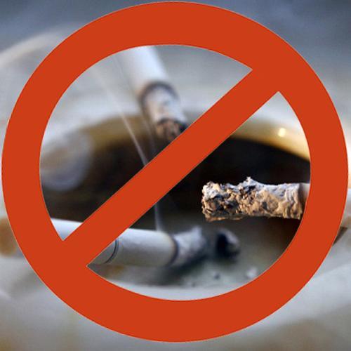 должны фото о борьбе с курением подмосковье