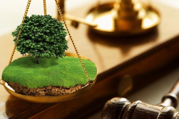 Незаконный захват земельного участка